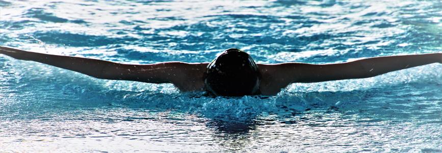 Schwimmer bündeln die Kräfte