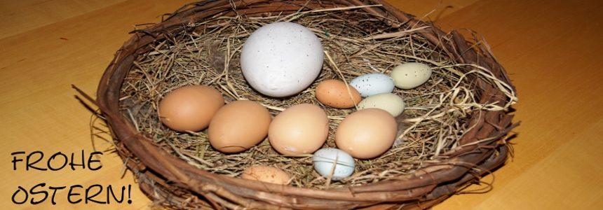 Der Oldenburger Schwimmverein wünscht frohe Ostern!